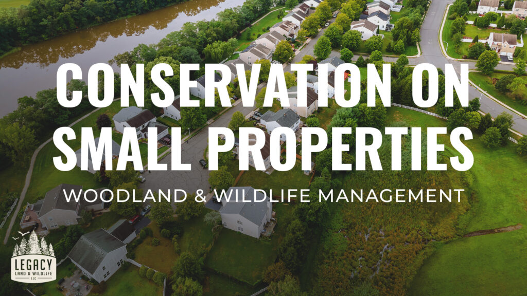 Conservation Ideas and Strategies on Small Properties