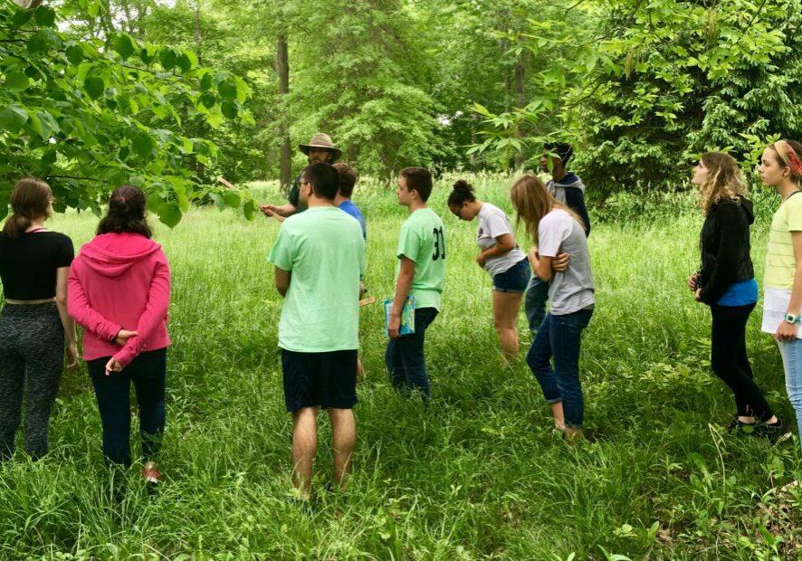 Envirothon Forestry Training4